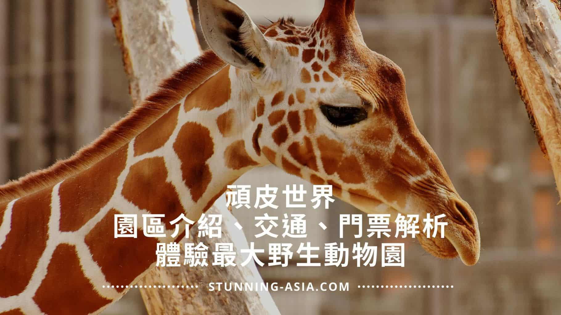頑皮世界 野生動物園 園區介紹、門票解析、交通方式
