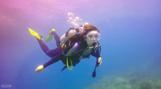 台北|gogo台北一日遊,挑戰你沒想過的7種玩法-潛水