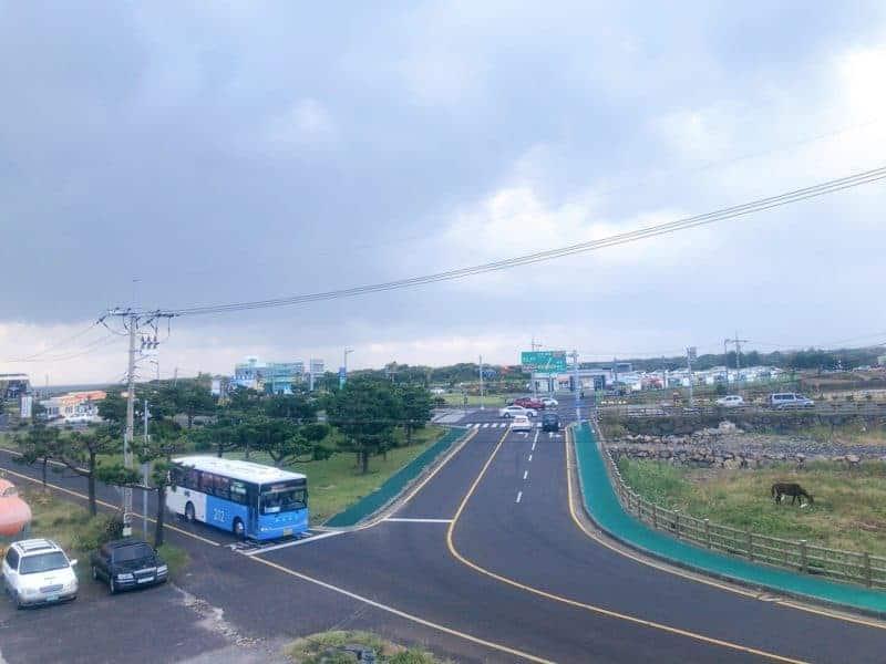 濟州島自由行 -藍色一般幹線巴士