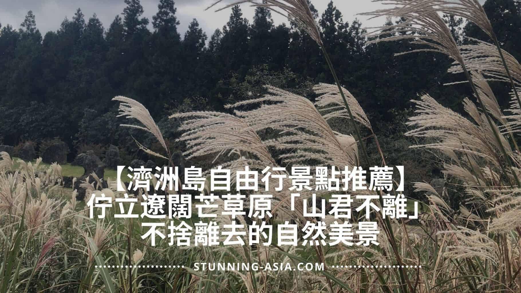 【濟洲島自由行景點推薦】佇立遼闊芒草原「山君不離」,不捨離去的自然美景