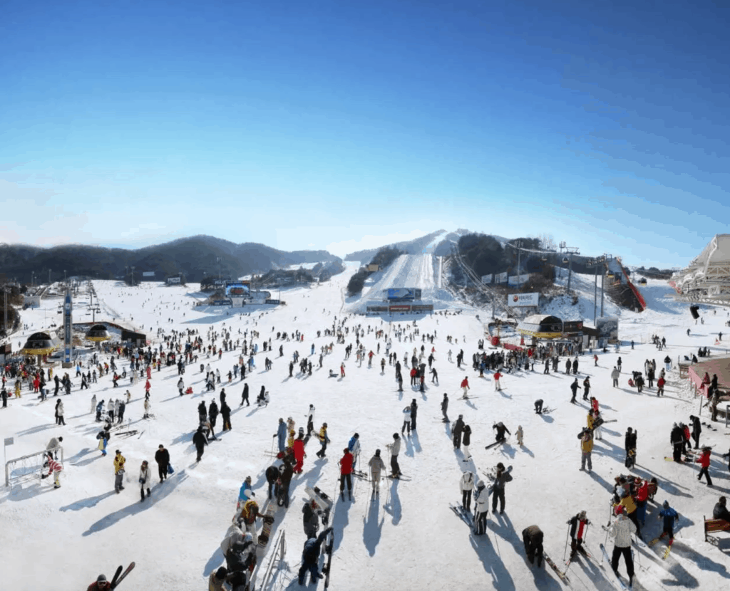 韓國滑雪場 威利希利滑雪度假村/ WELLI HILLI PARK