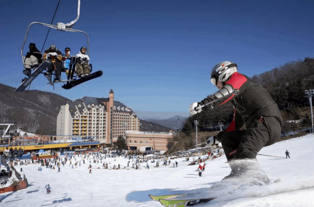陽智 PINE滑雪度假村